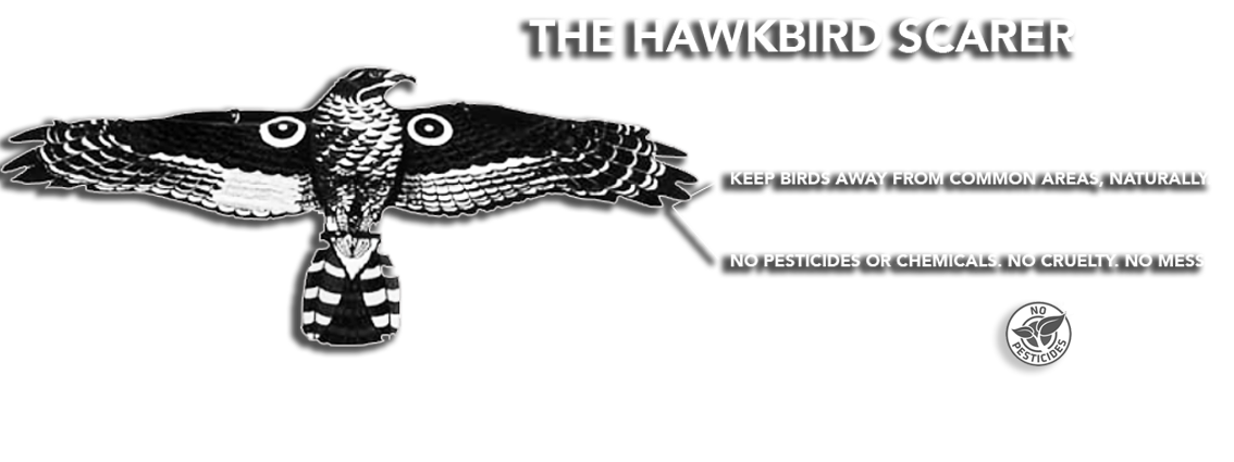 hawkbird-instruction-logo-2