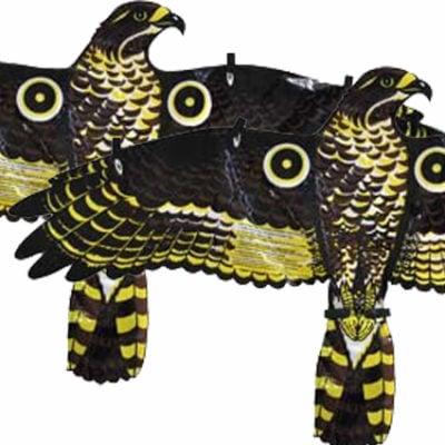 hawkbird-scarer-product-bird-repellent-skin-replacement
